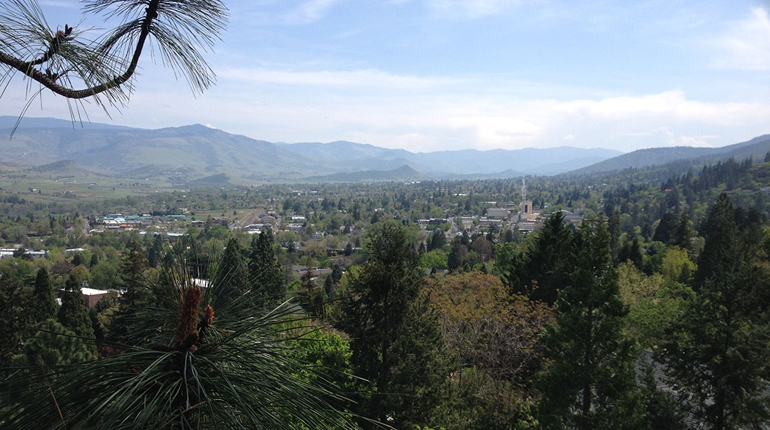 God And Country Tree Service, LLC.: Tree cabling and bracing in Grants Pass, Roseburg and Medford